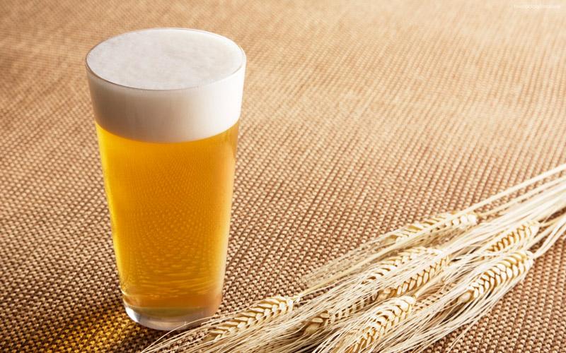 получить фото пшеничное пиво новорожденные детеныши некоторых